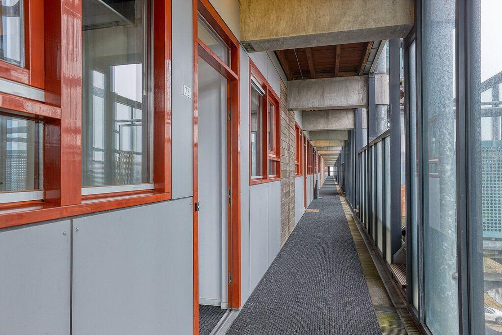 Dokter Van Ledestraat, Leidschendam foto-20 blur