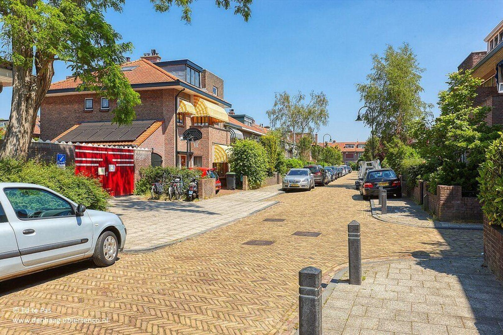 Laan van Swaensteijn, Voorburg foto-36 blur
