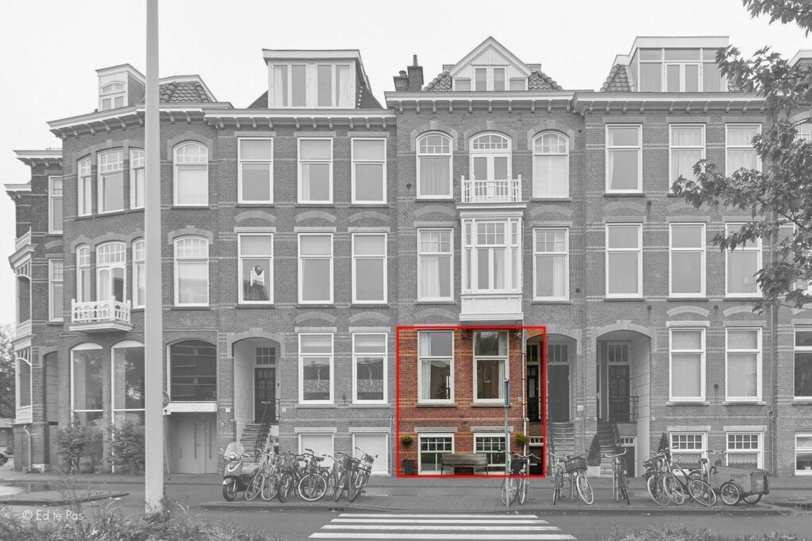 Groot Hertoginnelaan, Den Haag foto-3 blur
