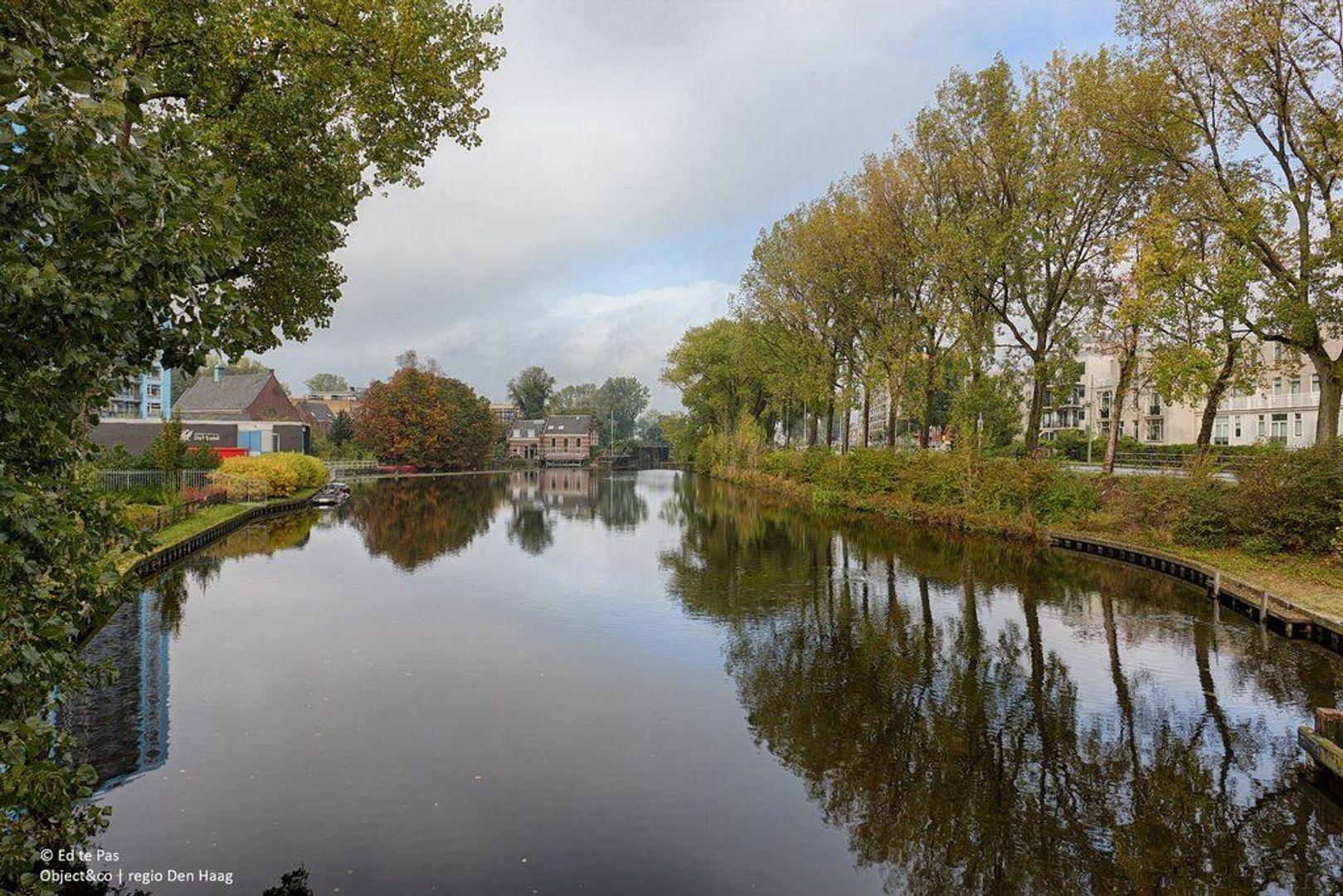 Groot Hertoginnelaan, Den Haag foto-31 blur