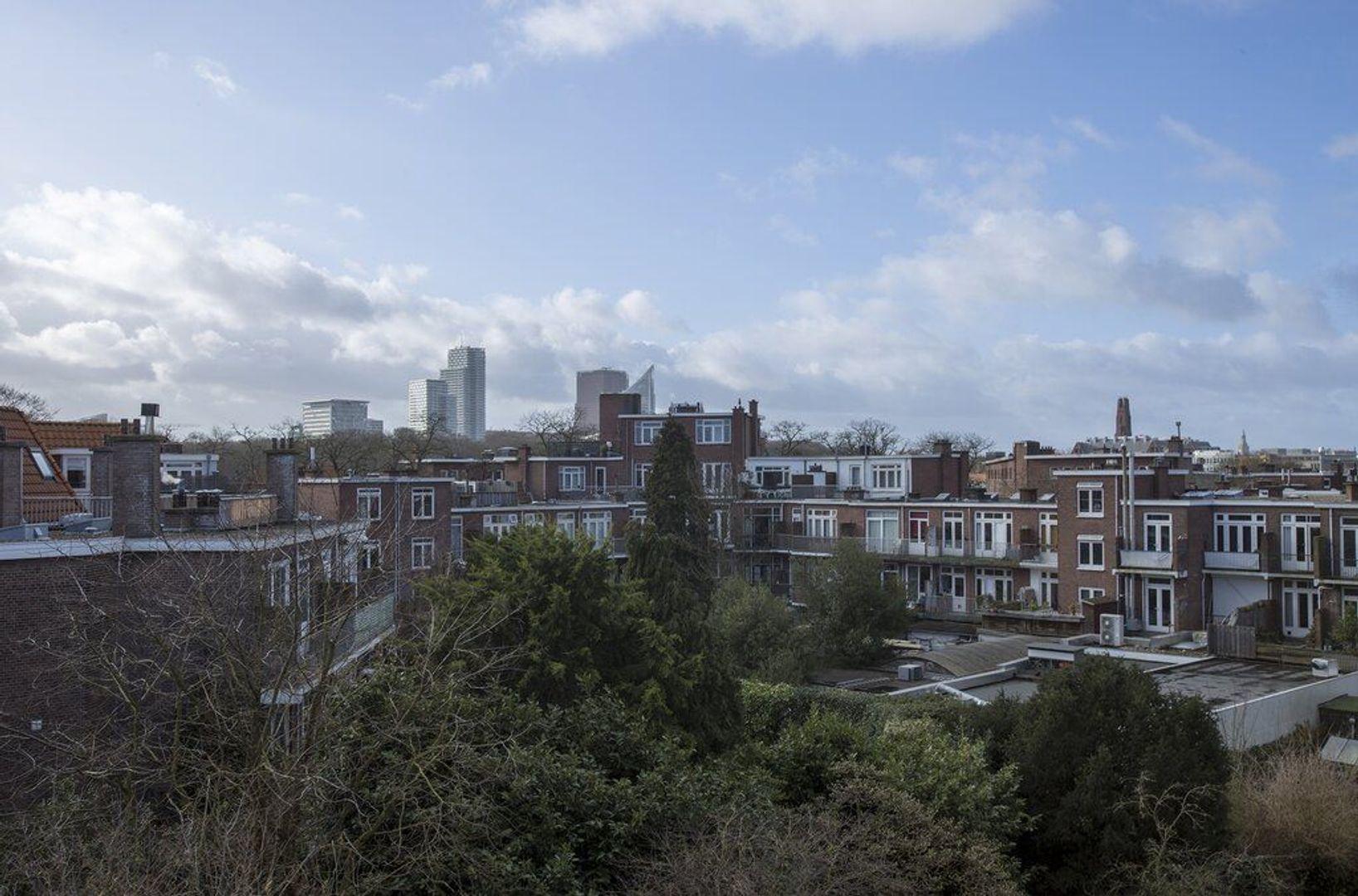 Paul Gabrielstraat, Den Haag foto-29 blur