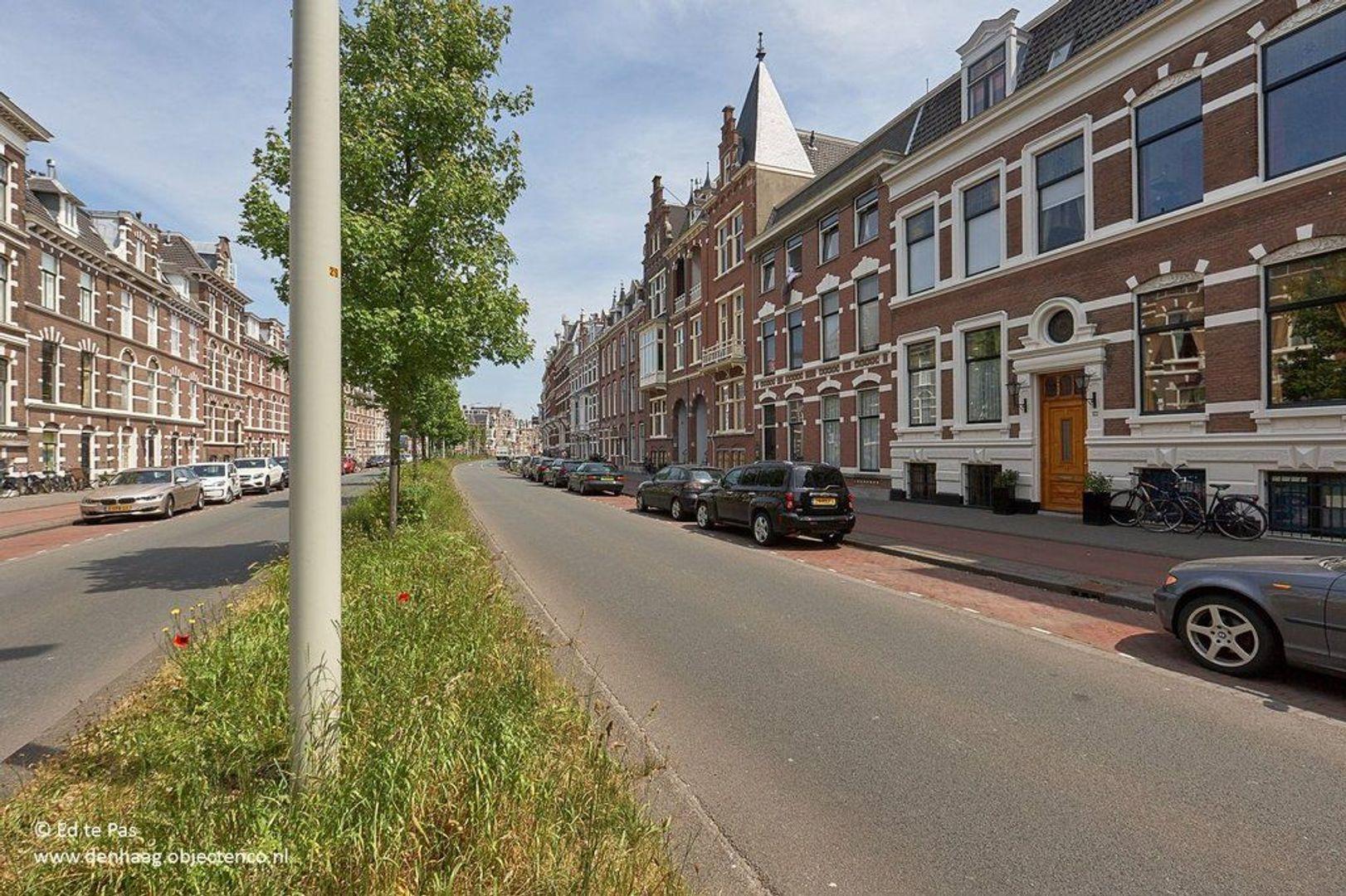 Groot Hertoginnelaan, Den Haag foto-20 blur