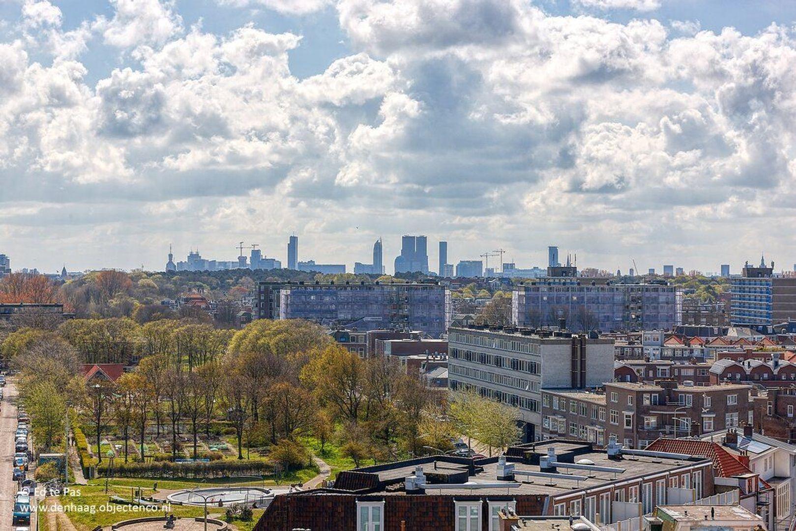 Seinpostduin, Den Haag foto-14 blur