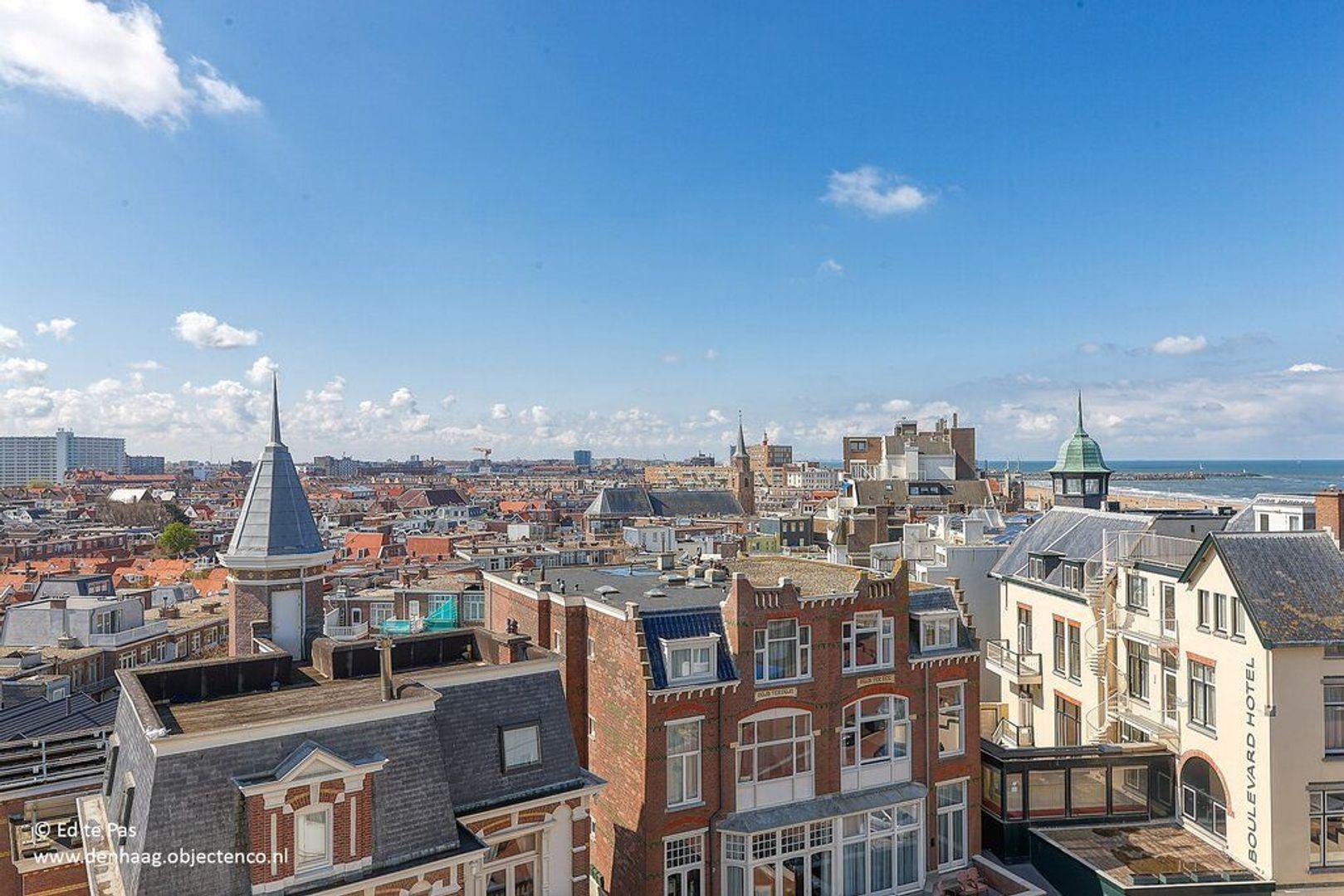 Seinpostduin, Den Haag foto-15 blur
