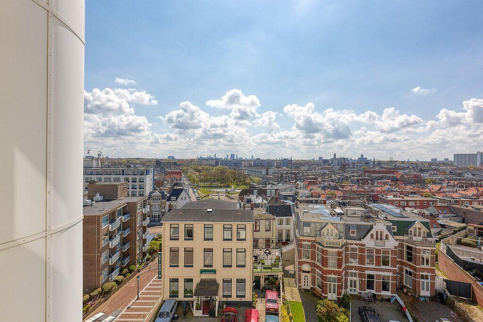 Seinpostduin, Den Haag foto-23 blur