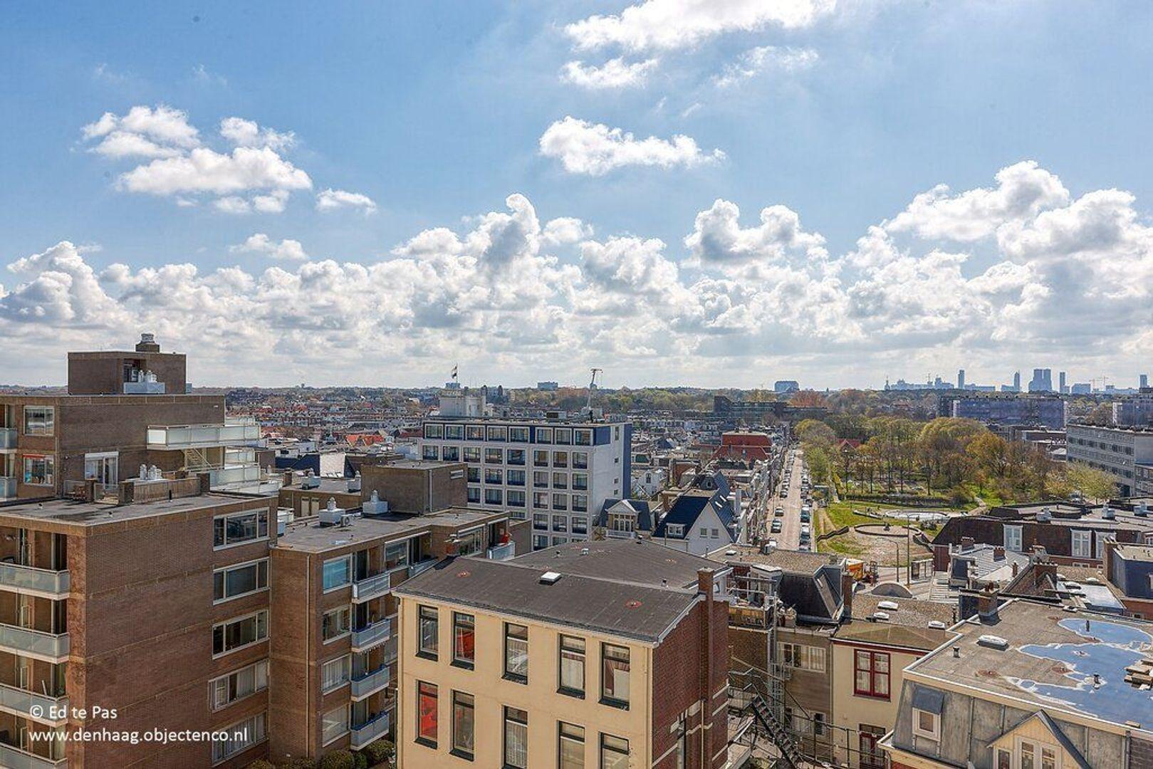 Seinpostduin, Den Haag foto-30 blur