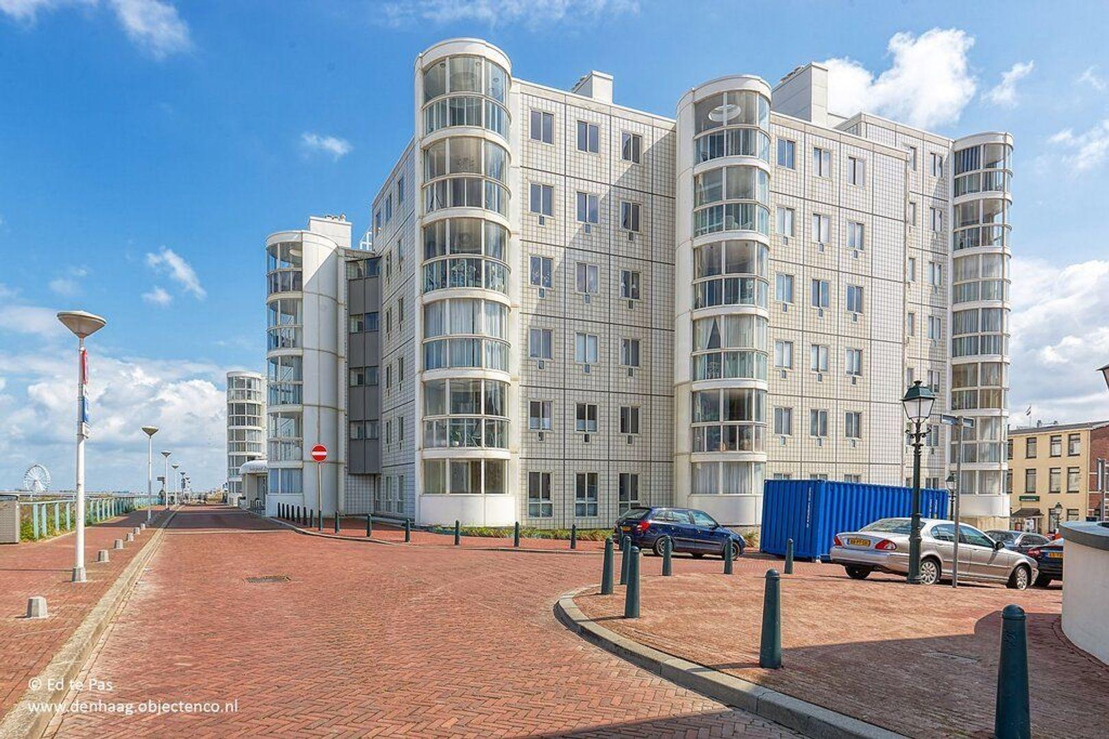 Seinpostduin, Den Haag foto-35 blur