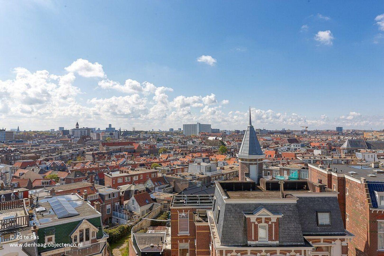 Seinpostduin, Den Haag foto-38 blur