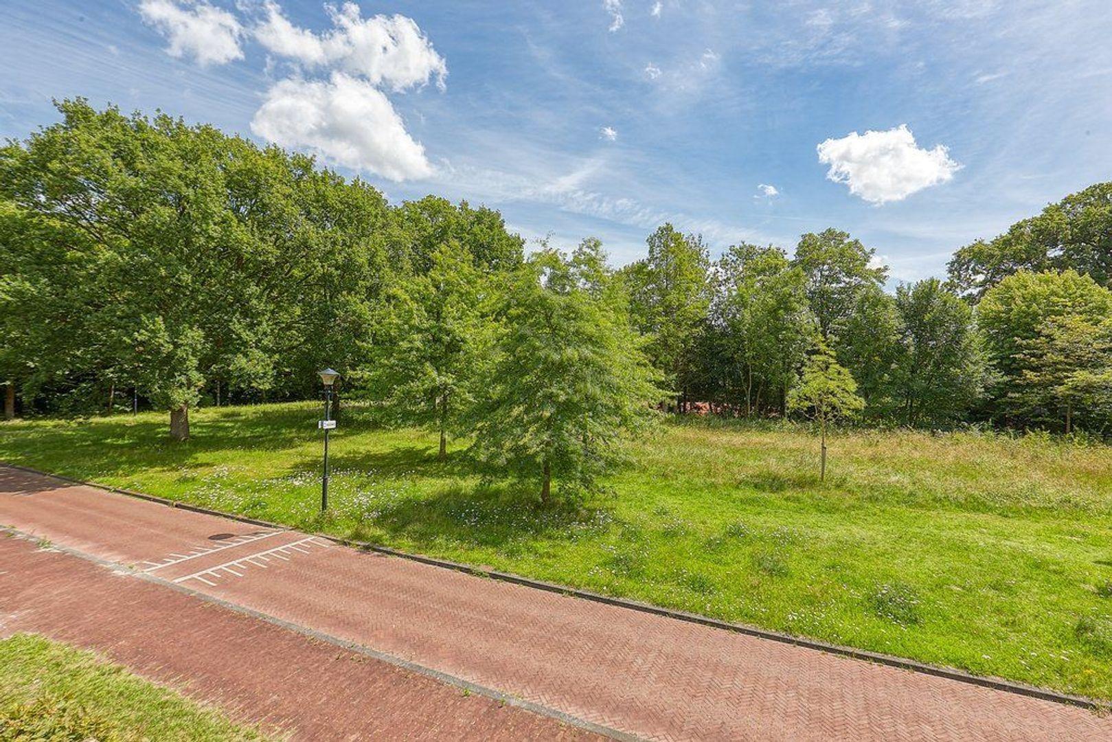 Park de Wervelaan, Rijswijk foto-23 blur