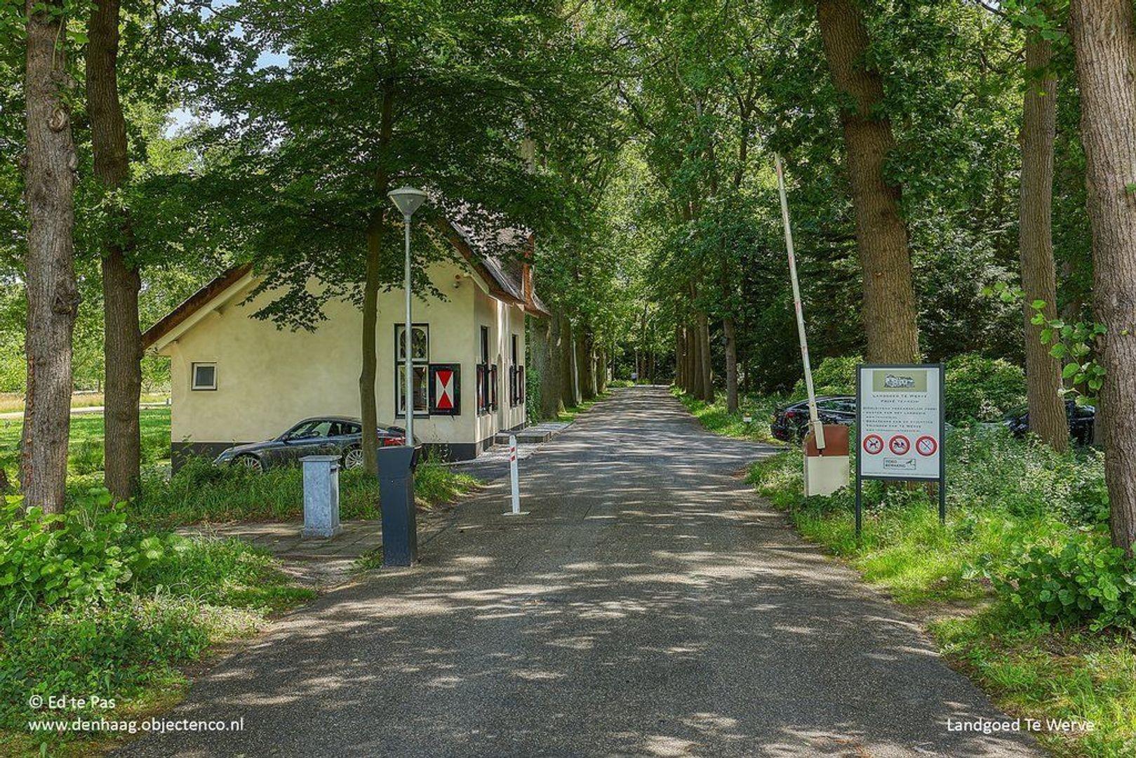 Park de Wervelaan, Rijswijk foto-34 blur