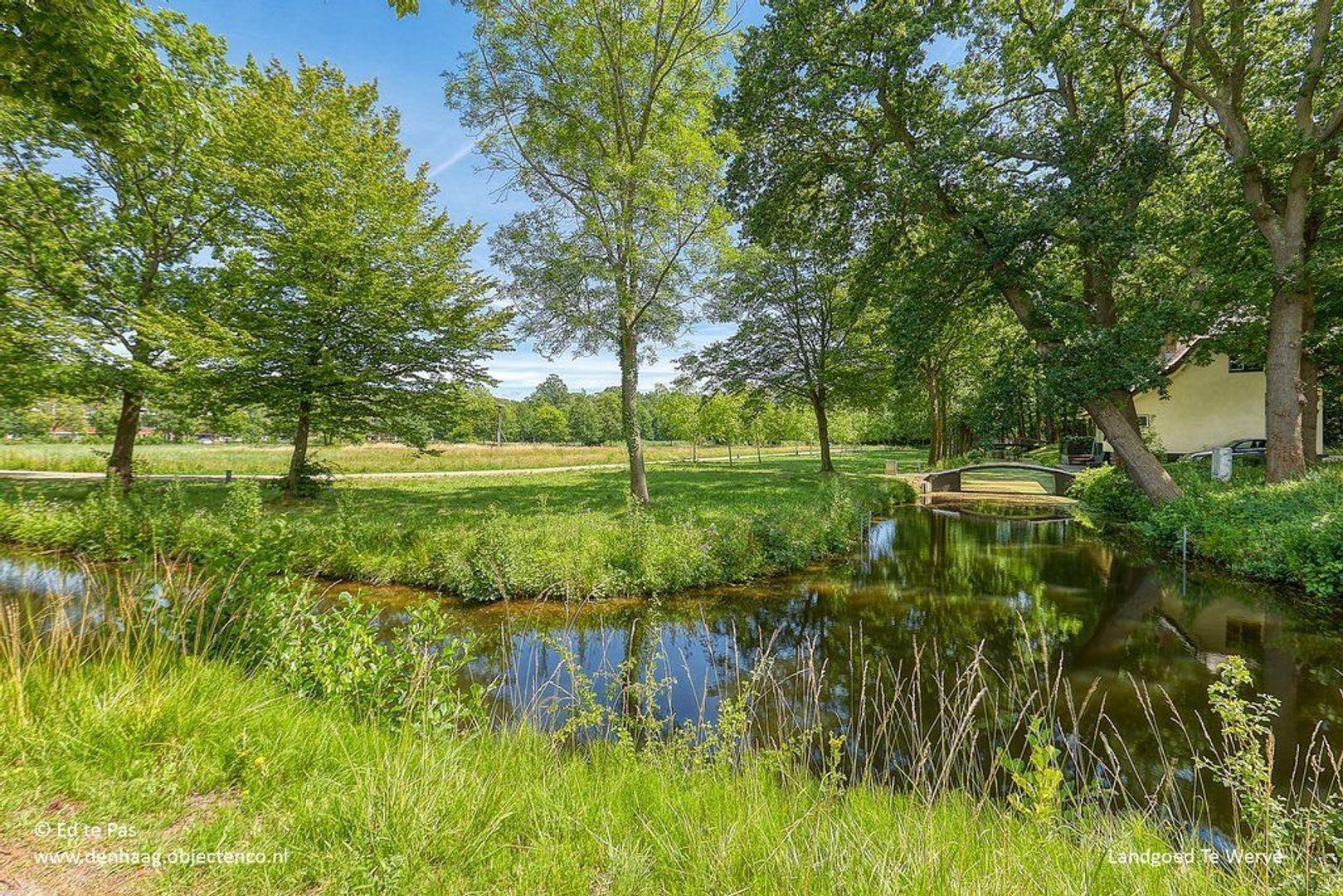 Park de Wervelaan, Rijswijk foto-33 blur