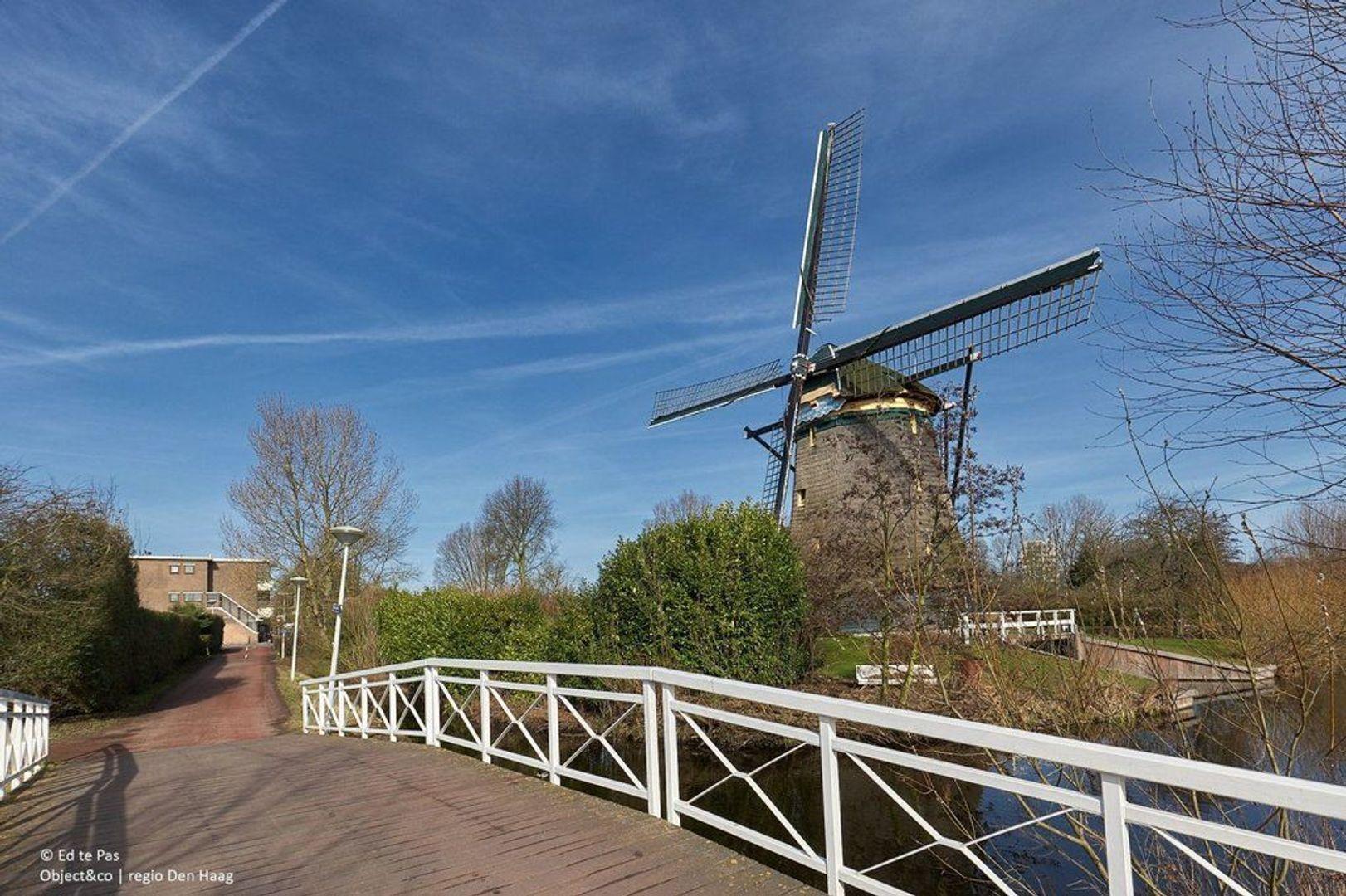 Van Heutszstraat, Den Haag foto-25 blur