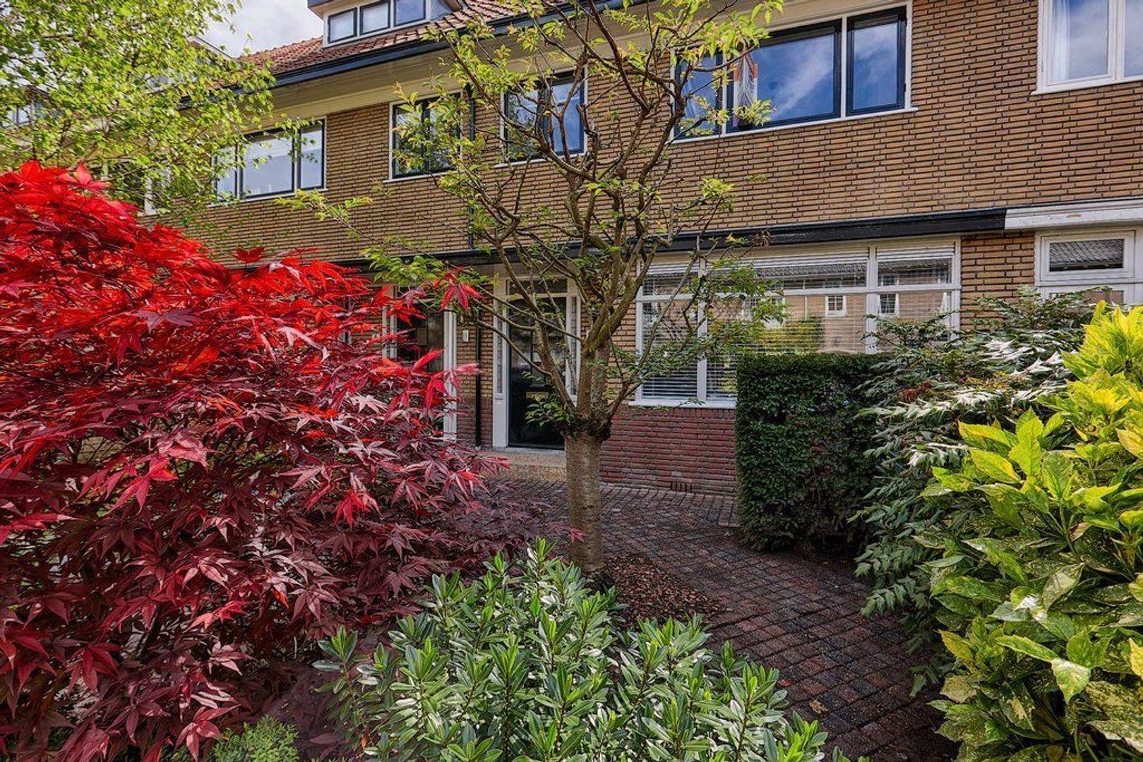 Hogerbeetsstraat, Wassenaar foto-2 blur
