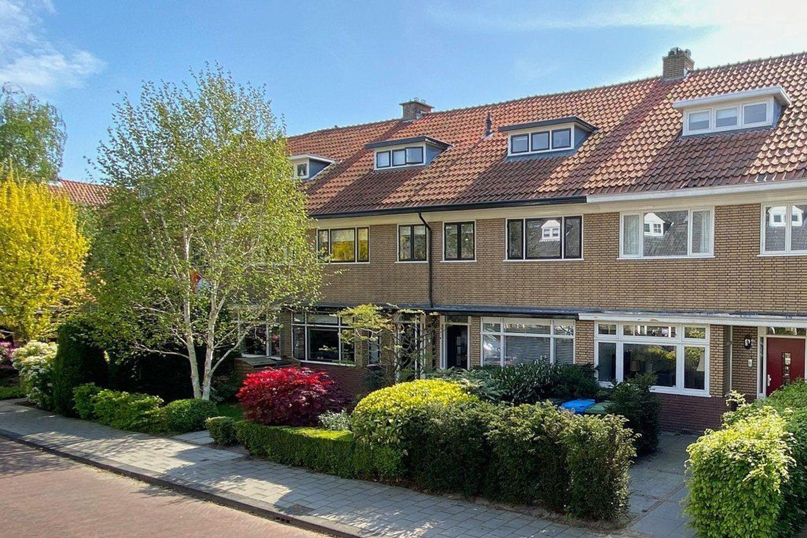 Hogerbeetsstraat, Wassenaar foto-0 blur
