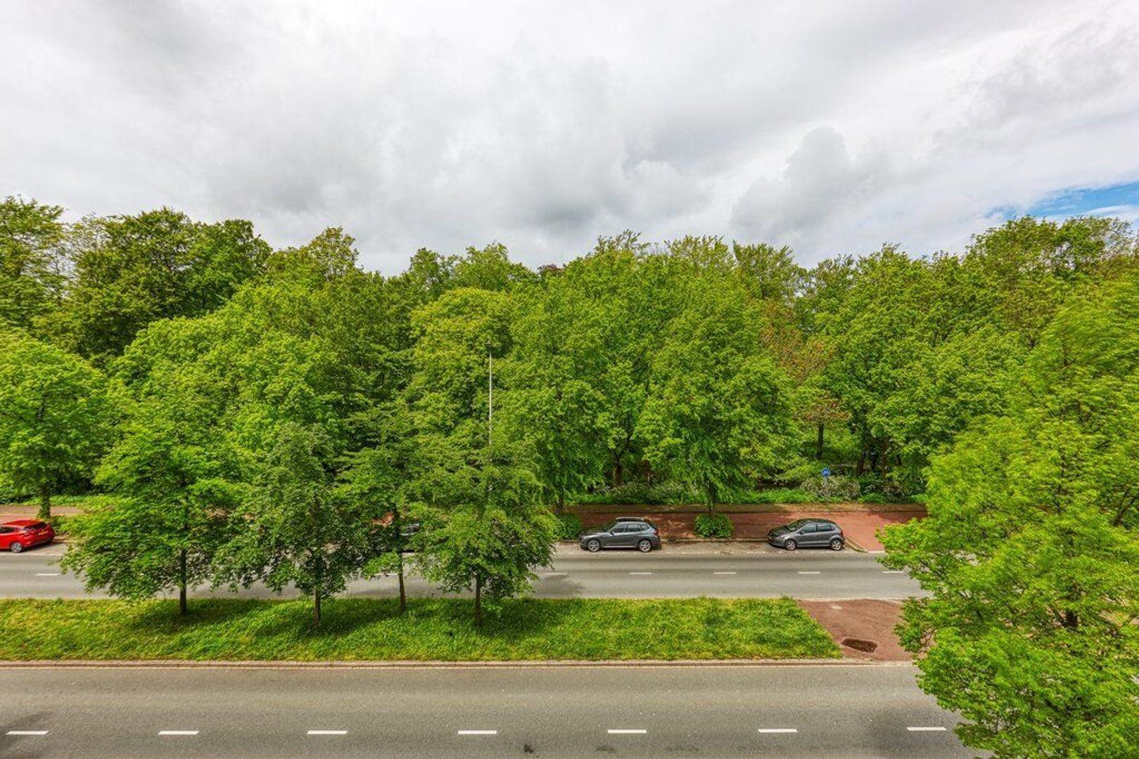Bezuidenhoutseweg, Den Haag foto-9 blur