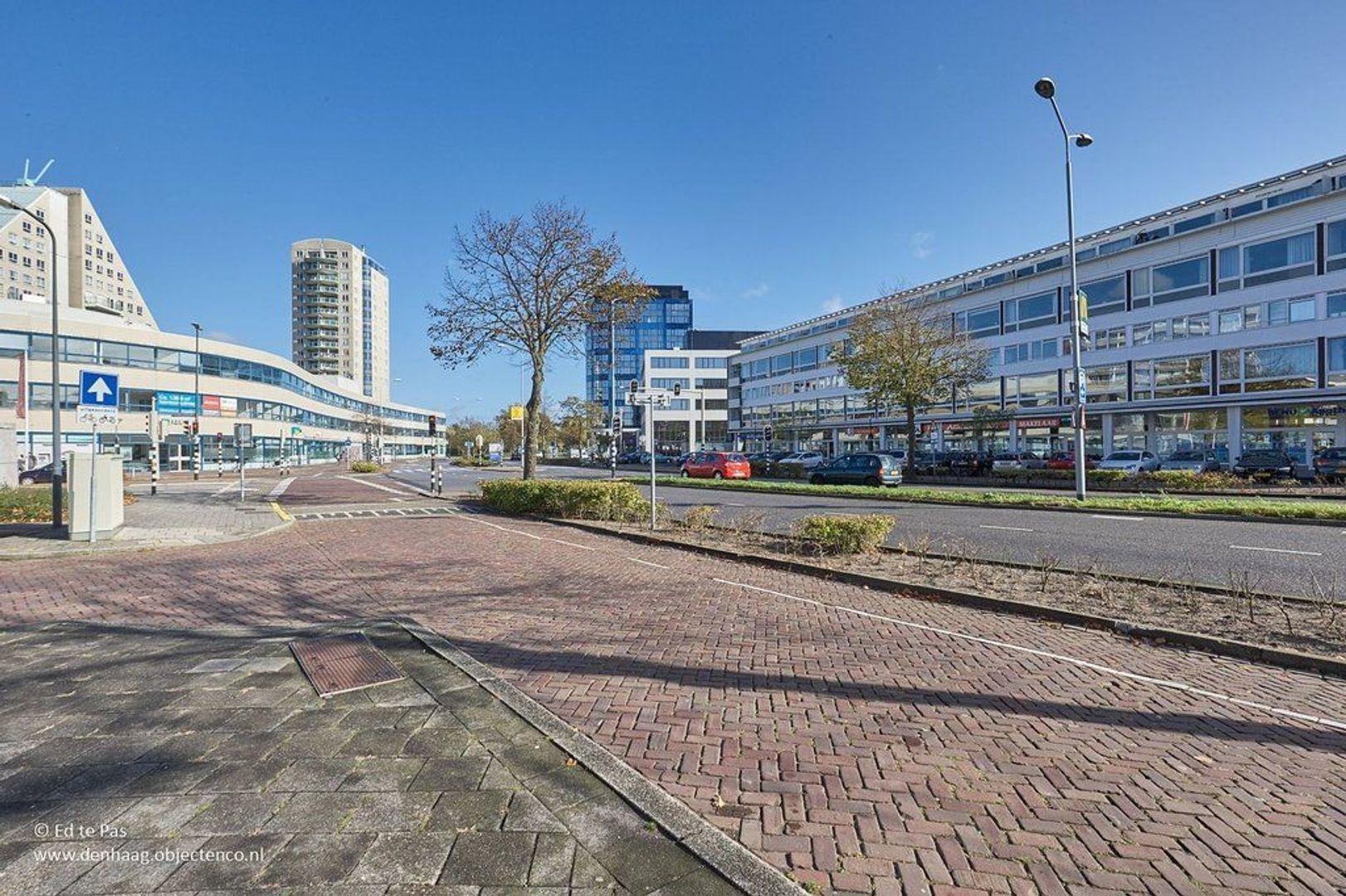 Prins Bernhardlaan, Voorburg foto-19 blur
