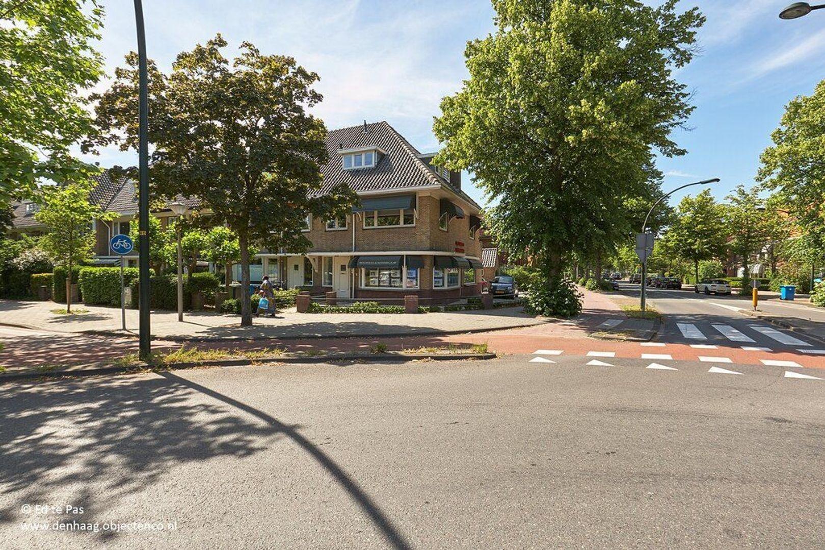 Van Oldenbarneveltweg, Wassenaar foto-34 blur