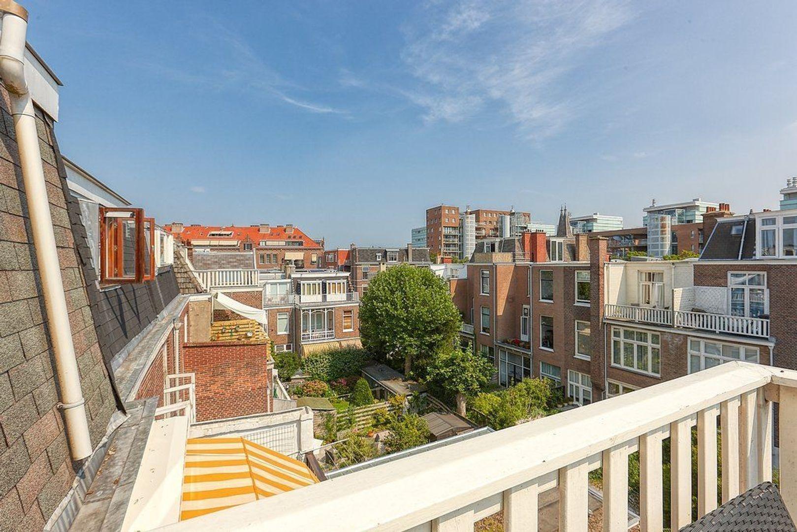 Van Loostraat, Den Haag foto-7 blur