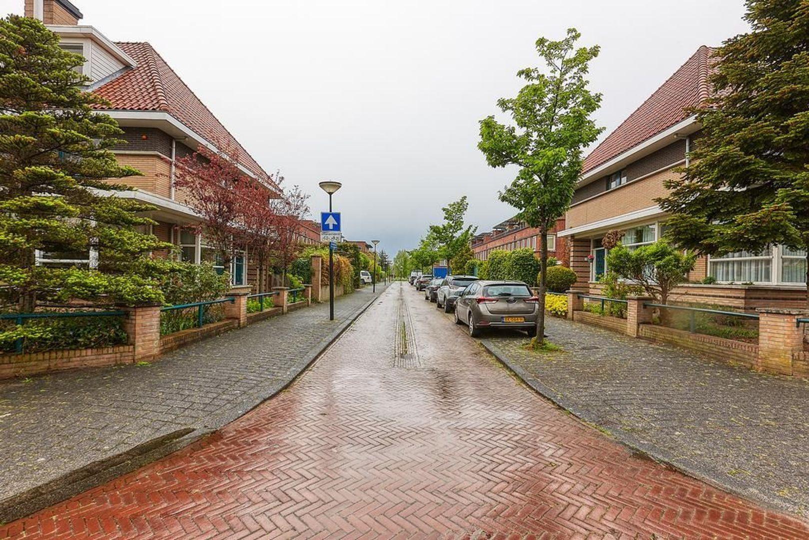 Sonsbeekstraat, Den Haag foto-31 blur