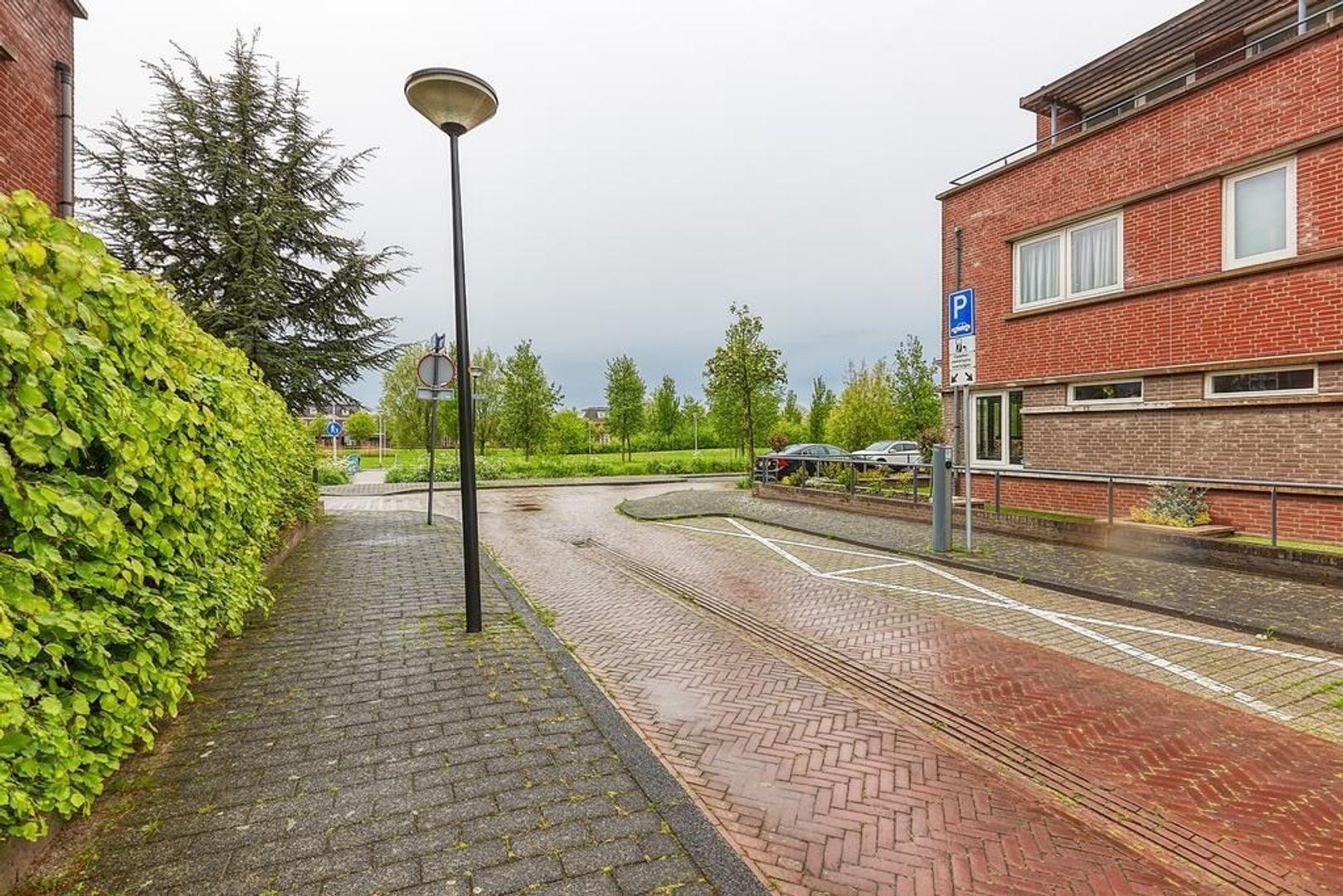Sonsbeekstraat, Den Haag foto-32 blur
