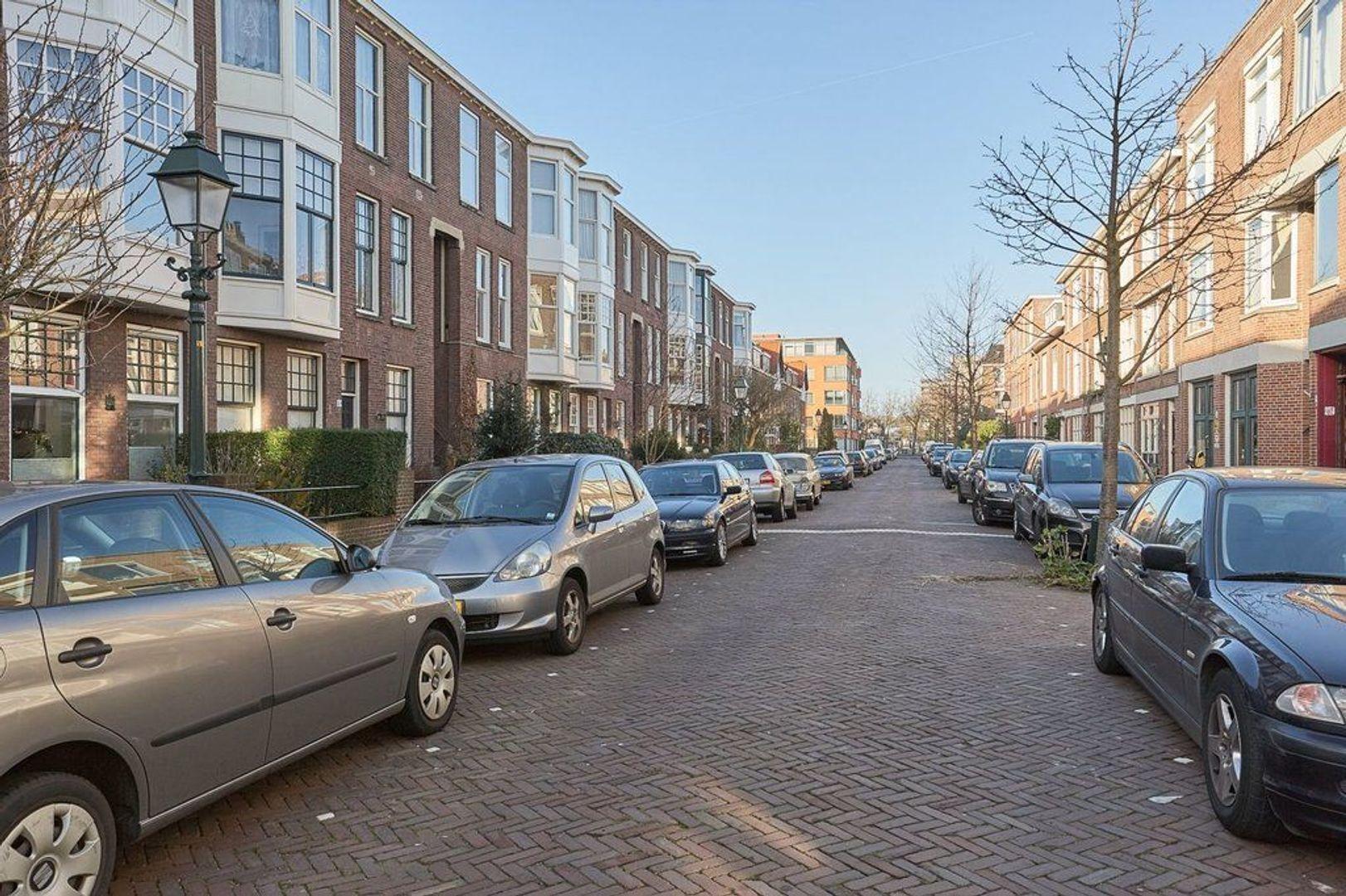 2e De Carpentierstraat, Den Haag foto-21 blur