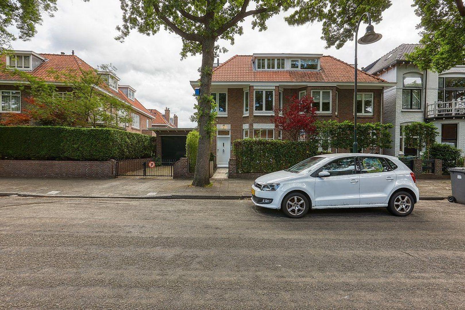 Groen van Prinstererlaan, Voorburg foto-3 blur