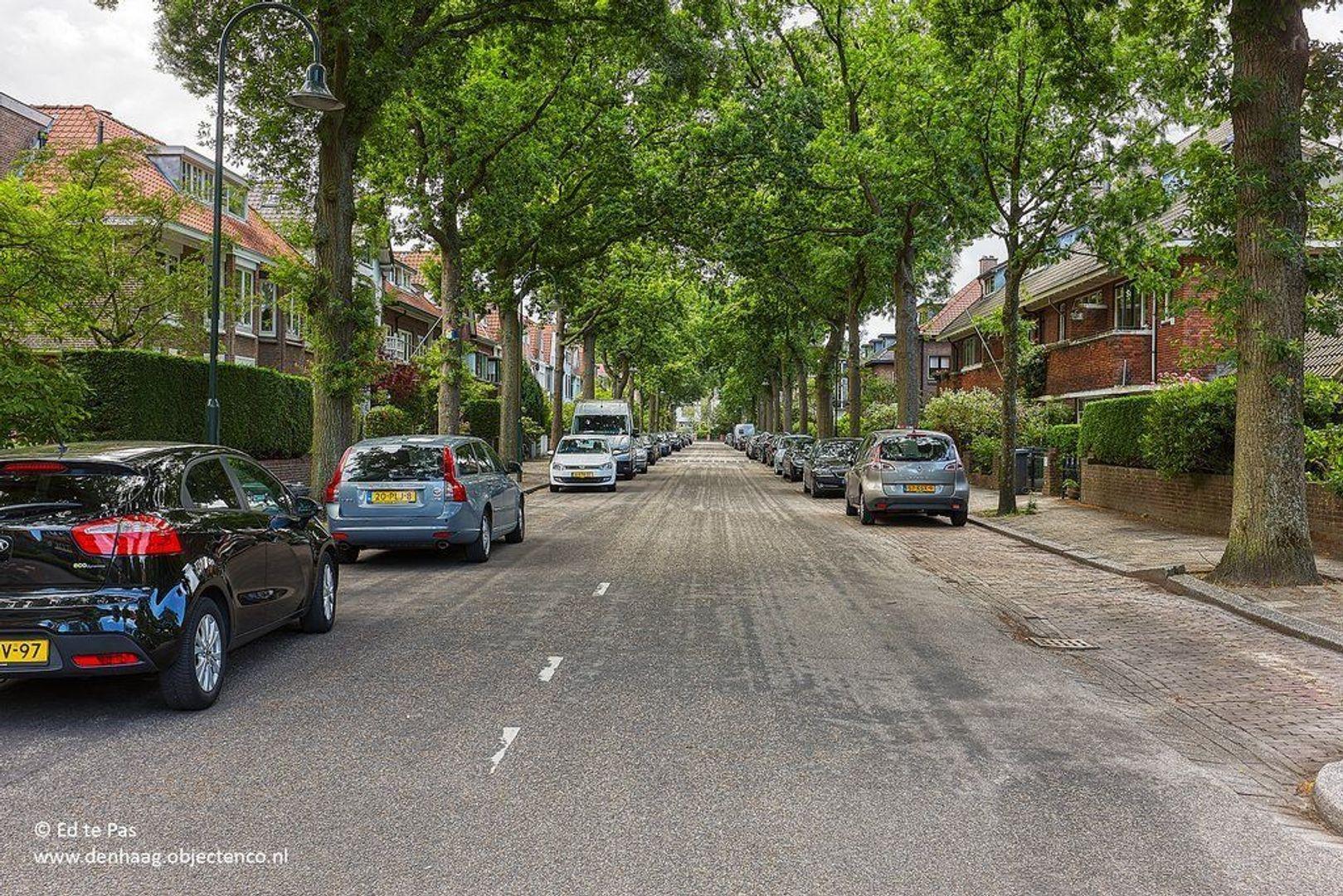 Groen van Prinstererlaan, Voorburg foto-31 blur