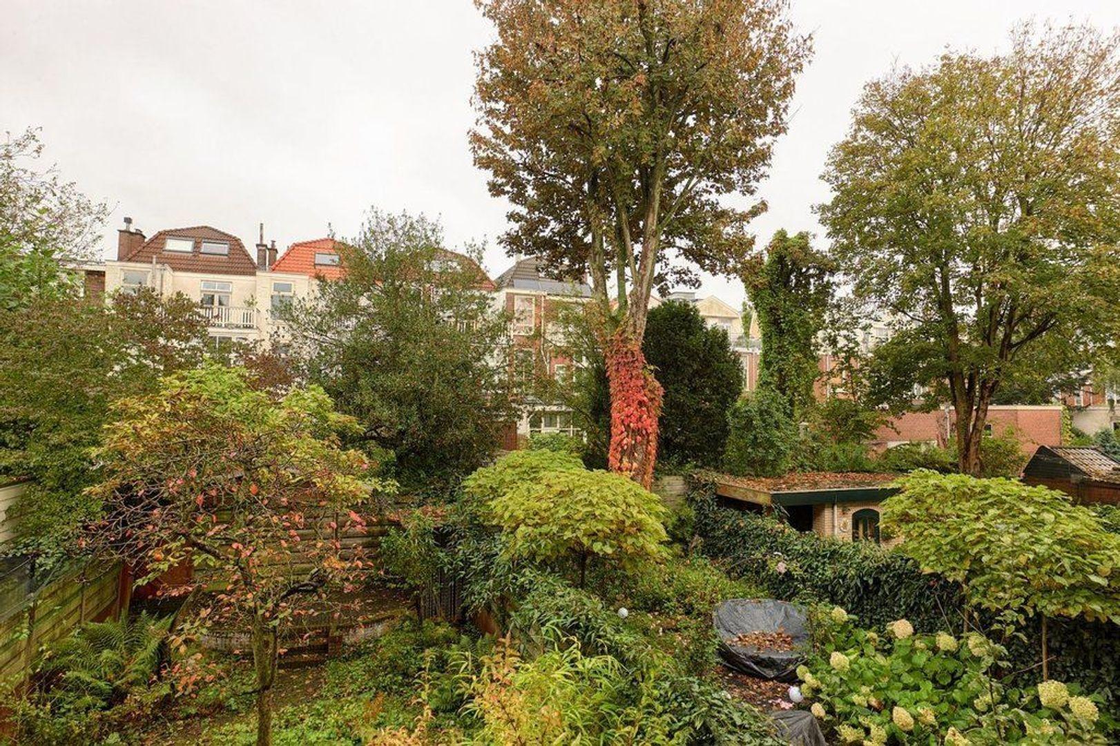 Gerard Reijnststraat, Den Haag foto-17 blur