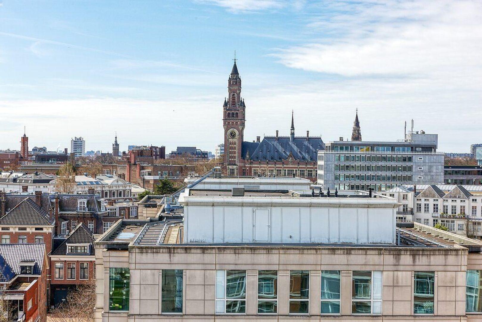 Burgemeester Marijnenlaan, Den Haag foto-25 blur