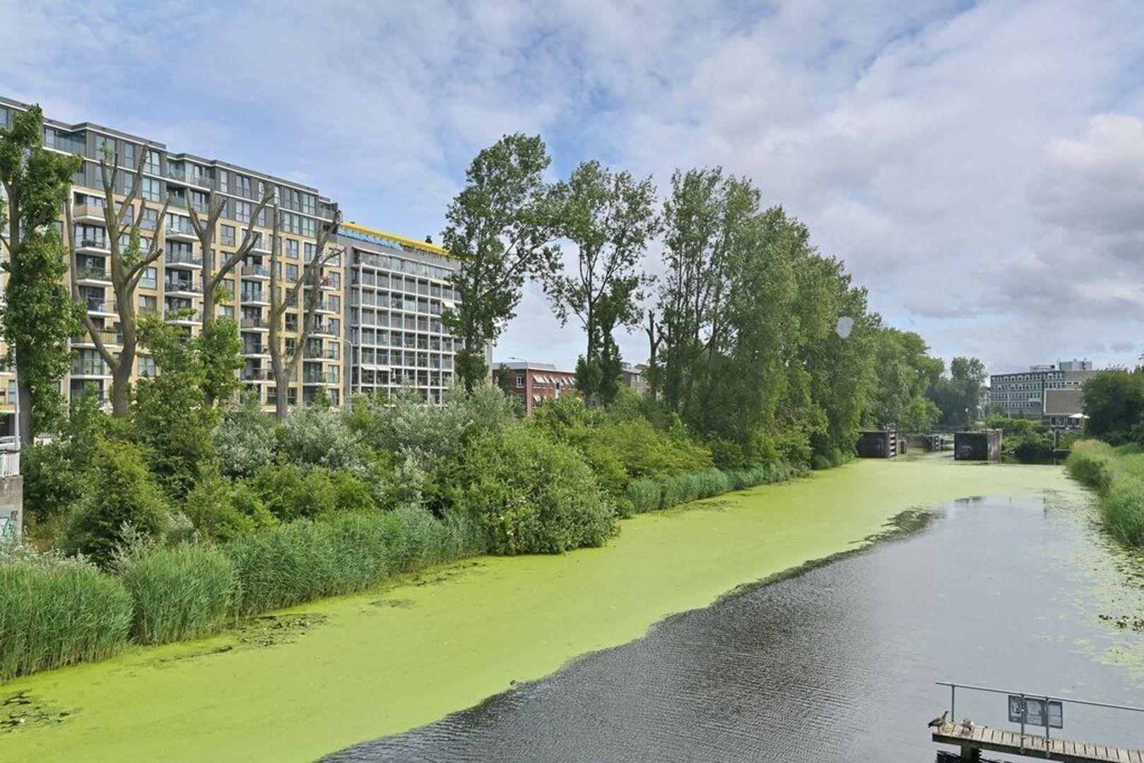 Verhulstplein, Den Haag foto-27 blur