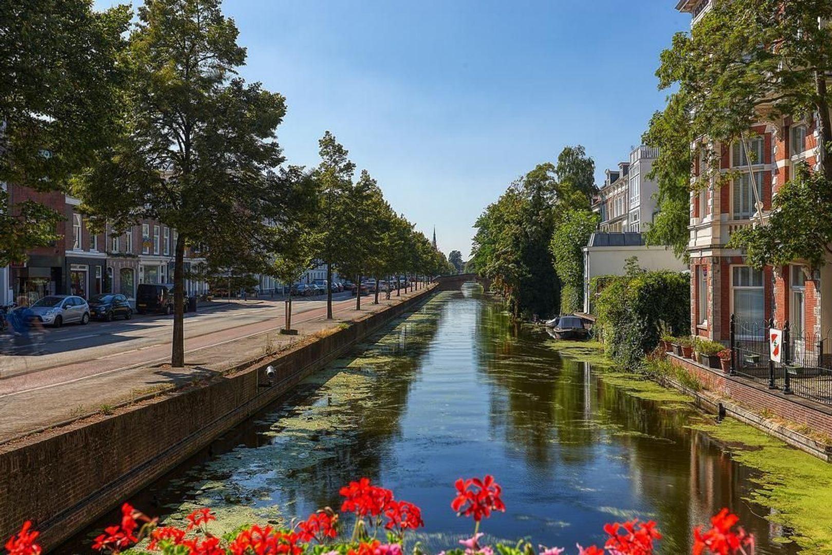 Cantaloupenburg, Den Haag foto-27 blur