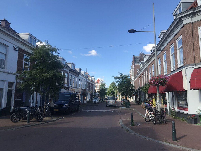 Roggeveenstraat, Den Haag foto-20 blur