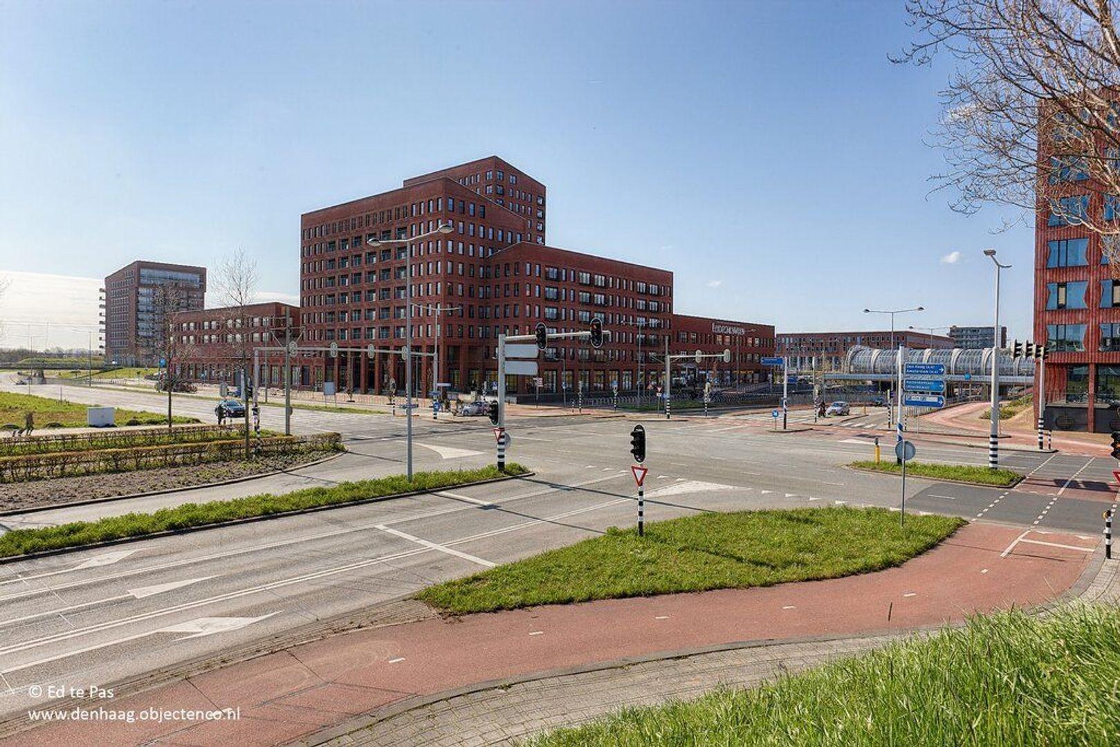 Hondsdrafveld, Den Haag foto-32 blur