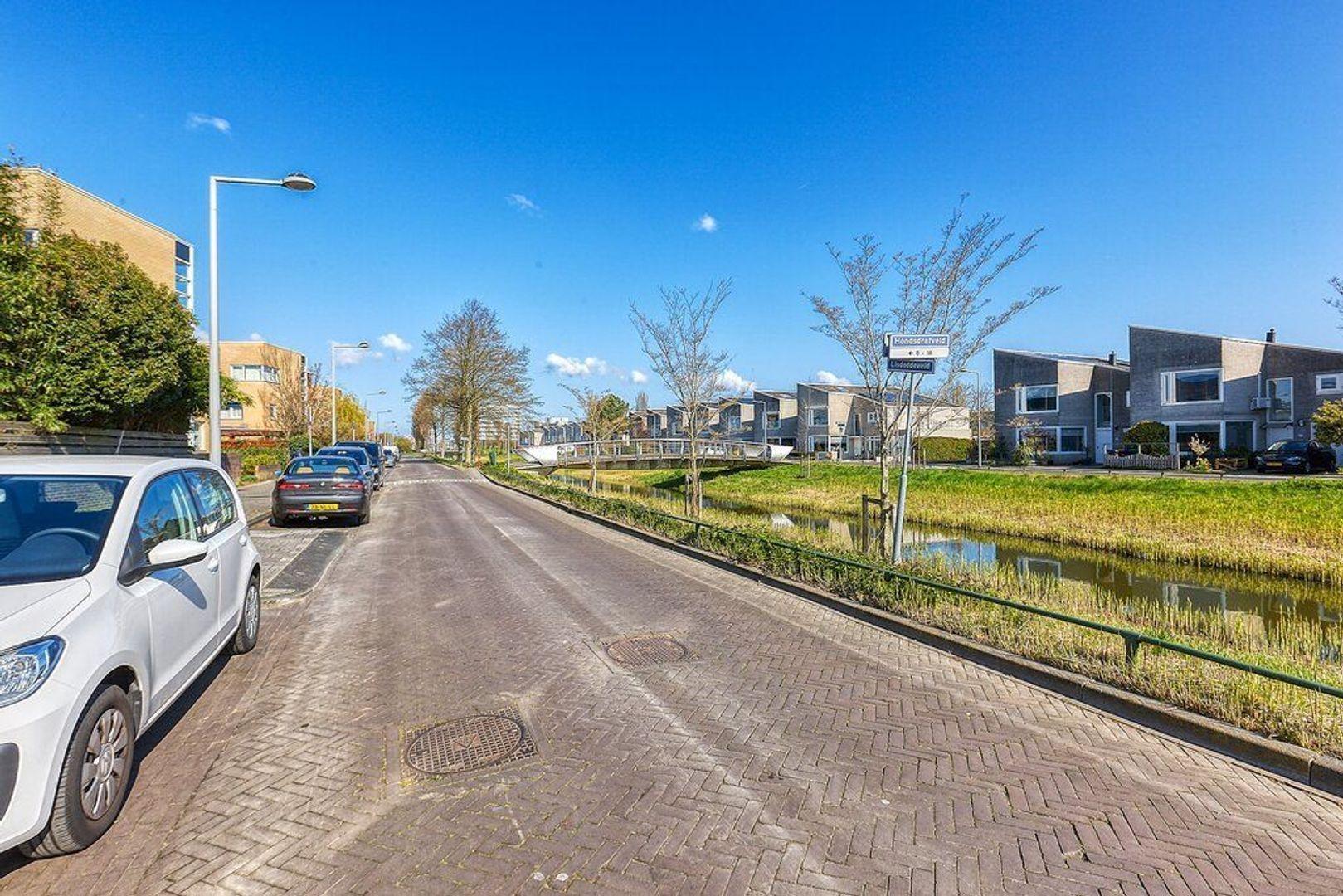 Hondsdrafveld, Den Haag foto-30 blur