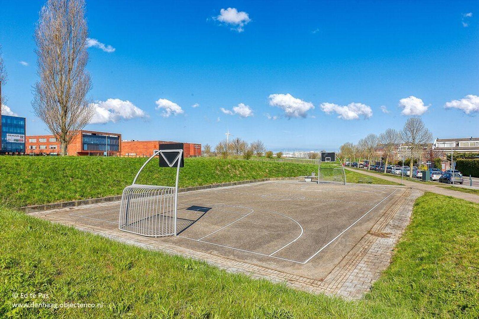 Hondsdrafveld, Den Haag foto-31 blur