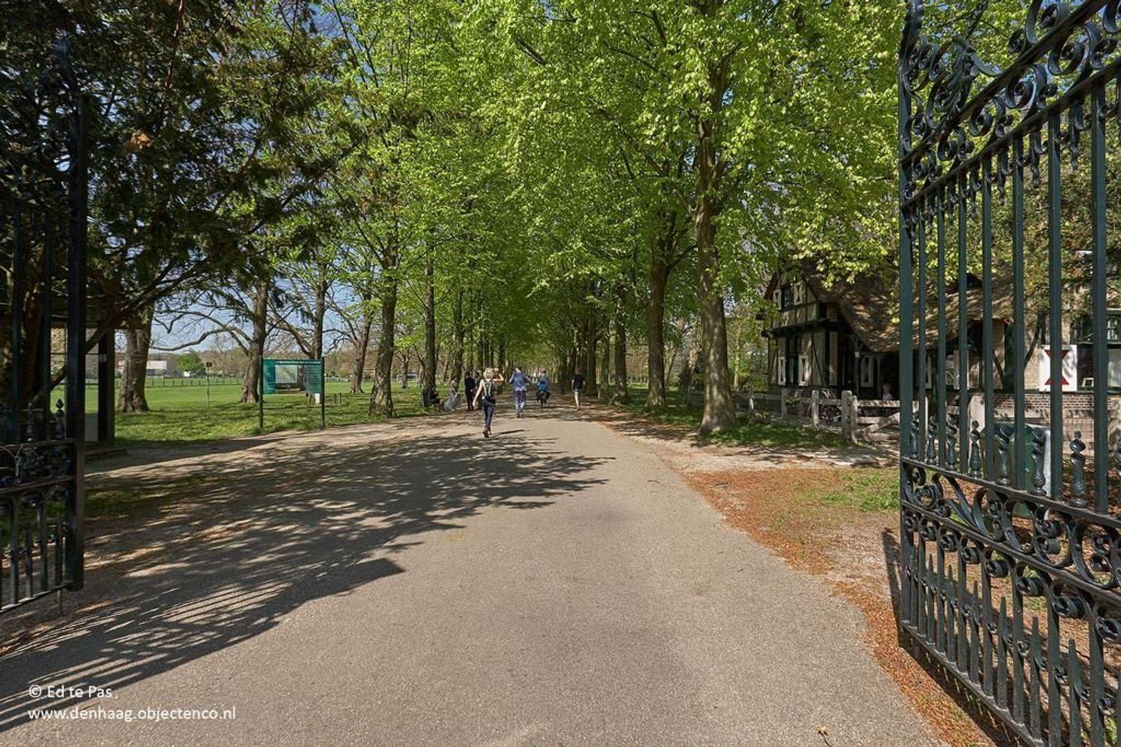 Pieter Meinersstraat, Den Haag foto-31 blur
