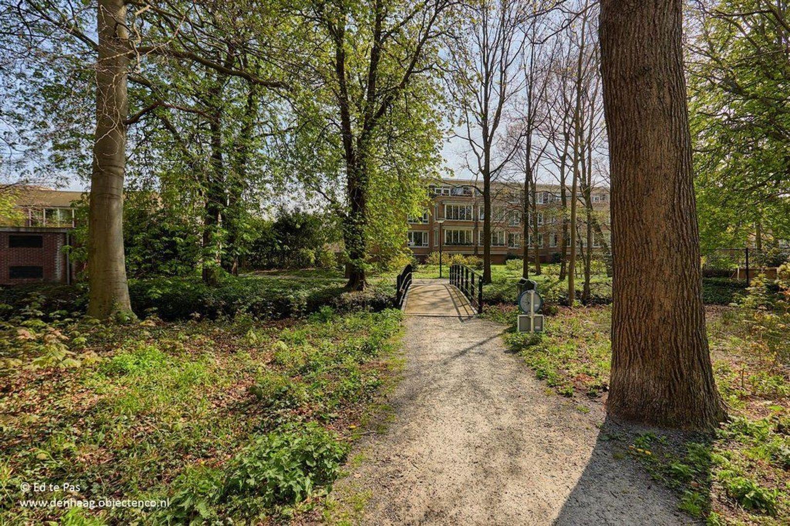 Floris Arntzeniusplein 103, Den Haag foto-26 blur