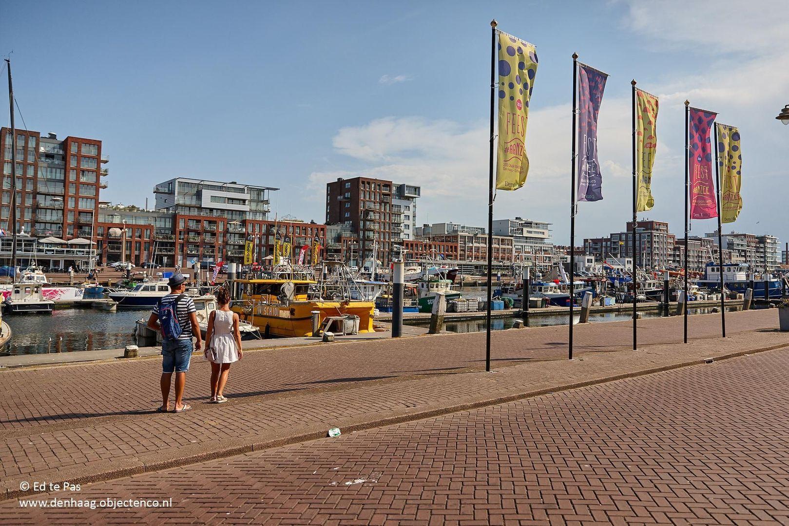 Prins Mauritslaan 1 2, Den Haag foto-33 blur