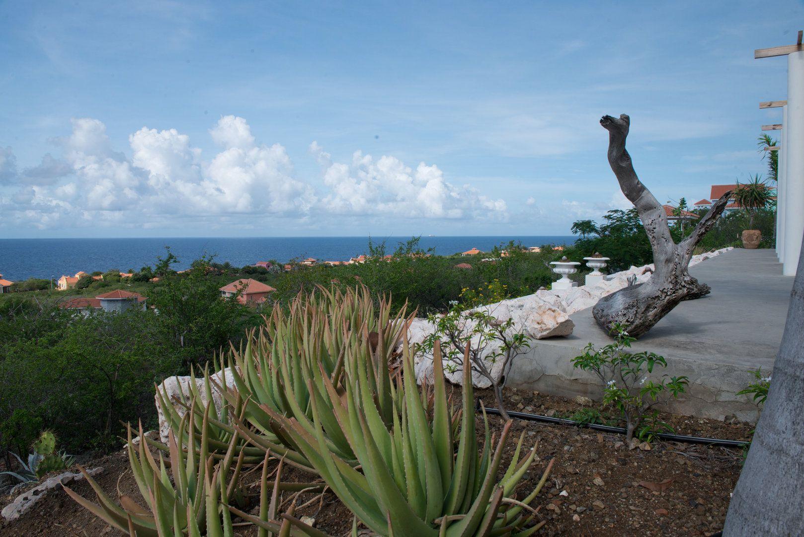 Coral Estate (Rif St. Marie) 222,  foto-16