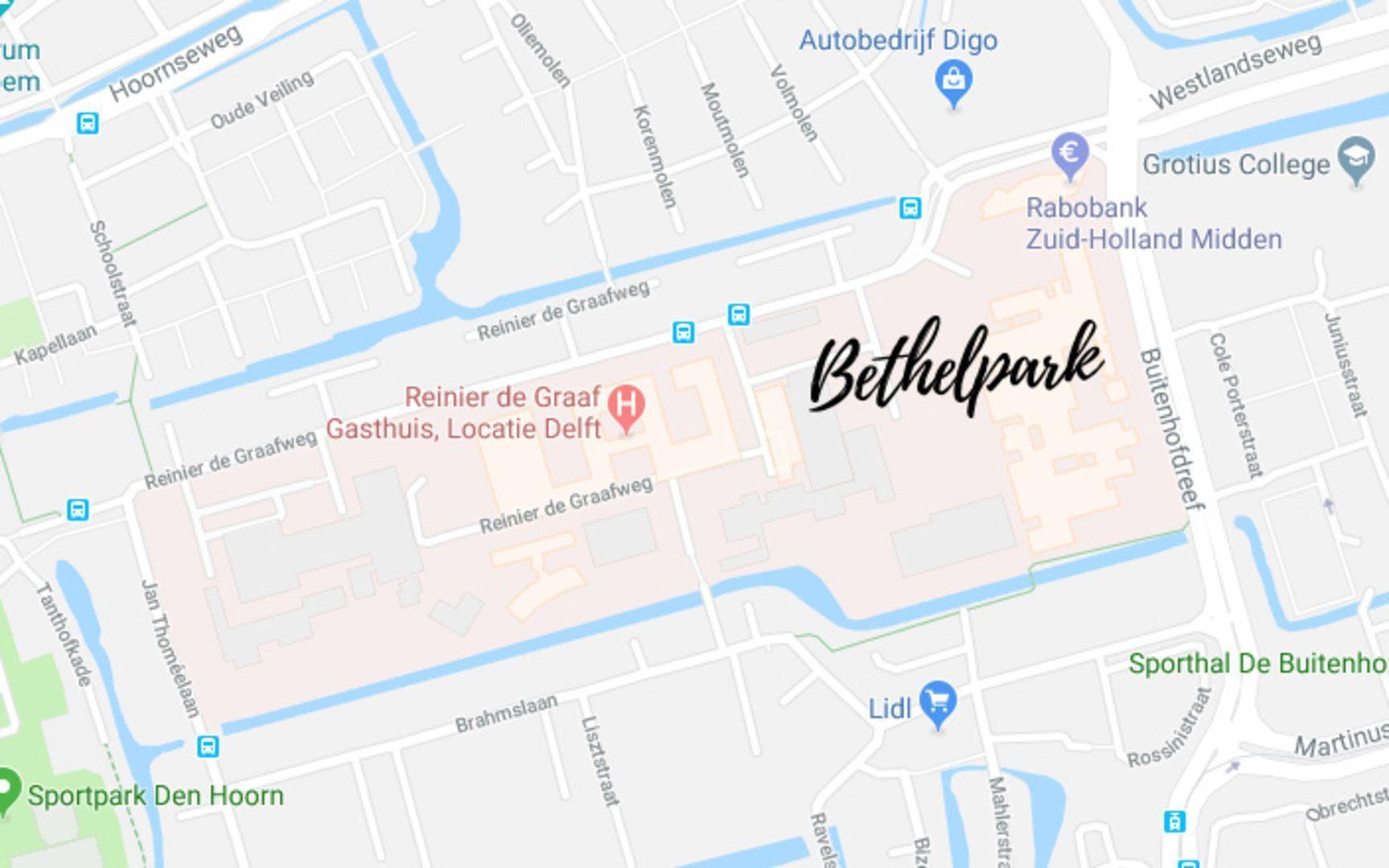 Reiner de Graafweg, Delft foto-13