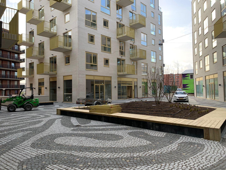 Irene boulevard, Delft foto-3