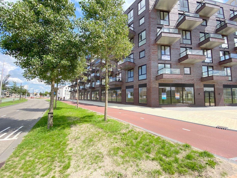 Irene boulevard, Delft foto-17