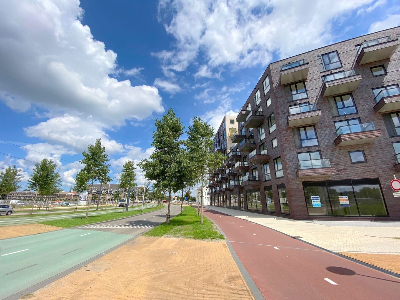 Irene boulevard, Delft foto-16