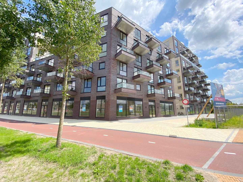 Irene boulevard, Delft foto-1
