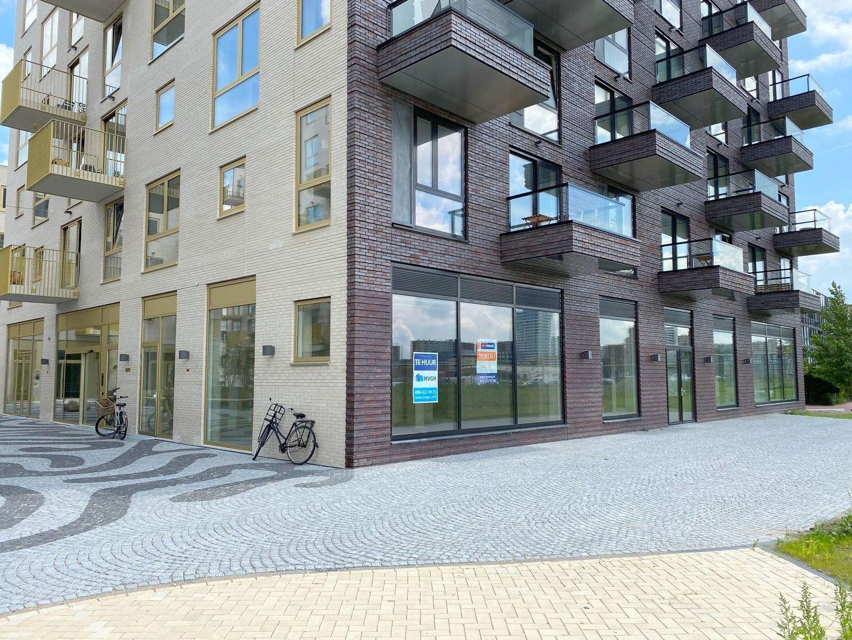 Irene boulevard, Delft foto-20