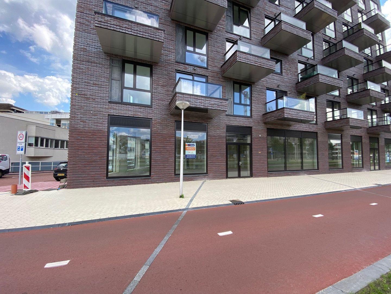 Irene boulevard, Delft foto-57