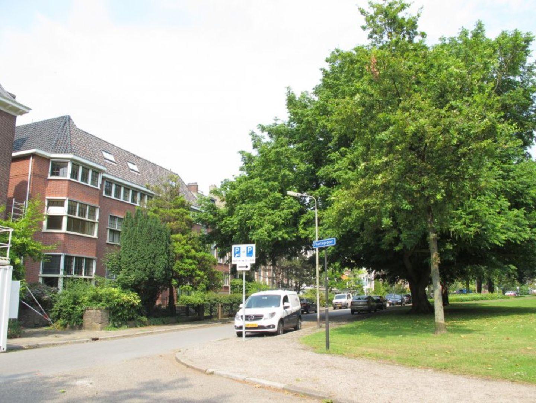 Nieuwe Plantage 28 3E 18M2, Delft foto-7
