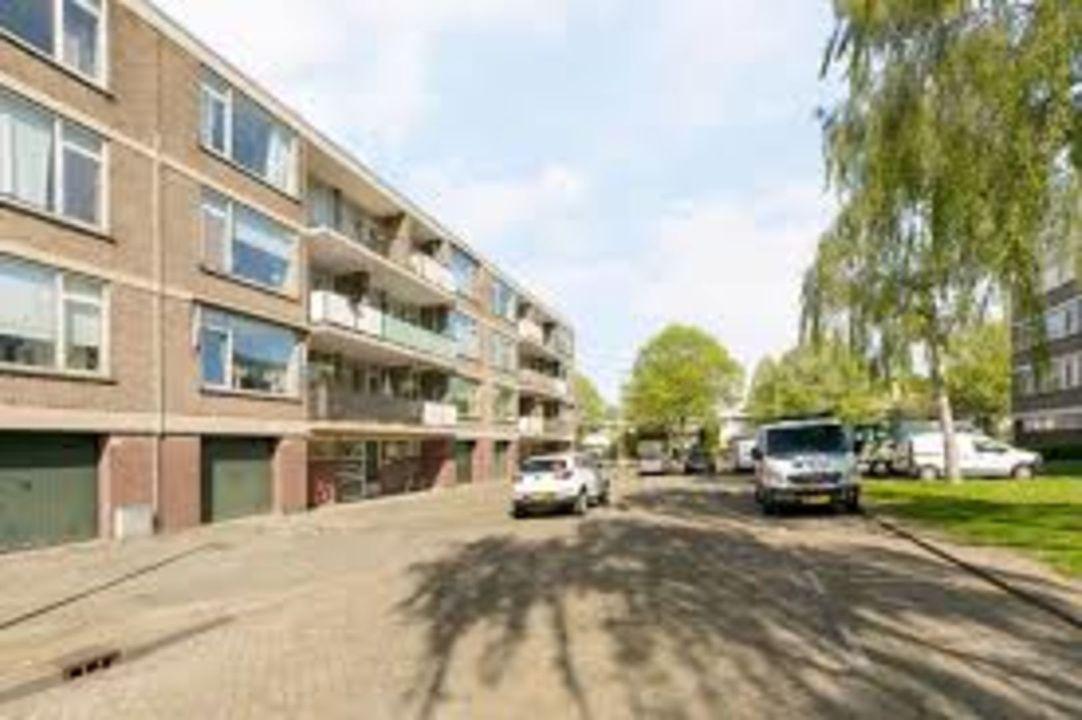 Drijfhoutstraat, Rotterdam