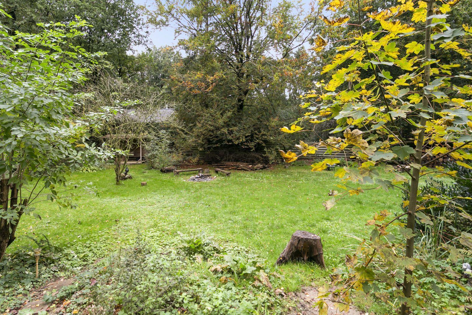Fazantenbosweg 12, Dalfsen foto-