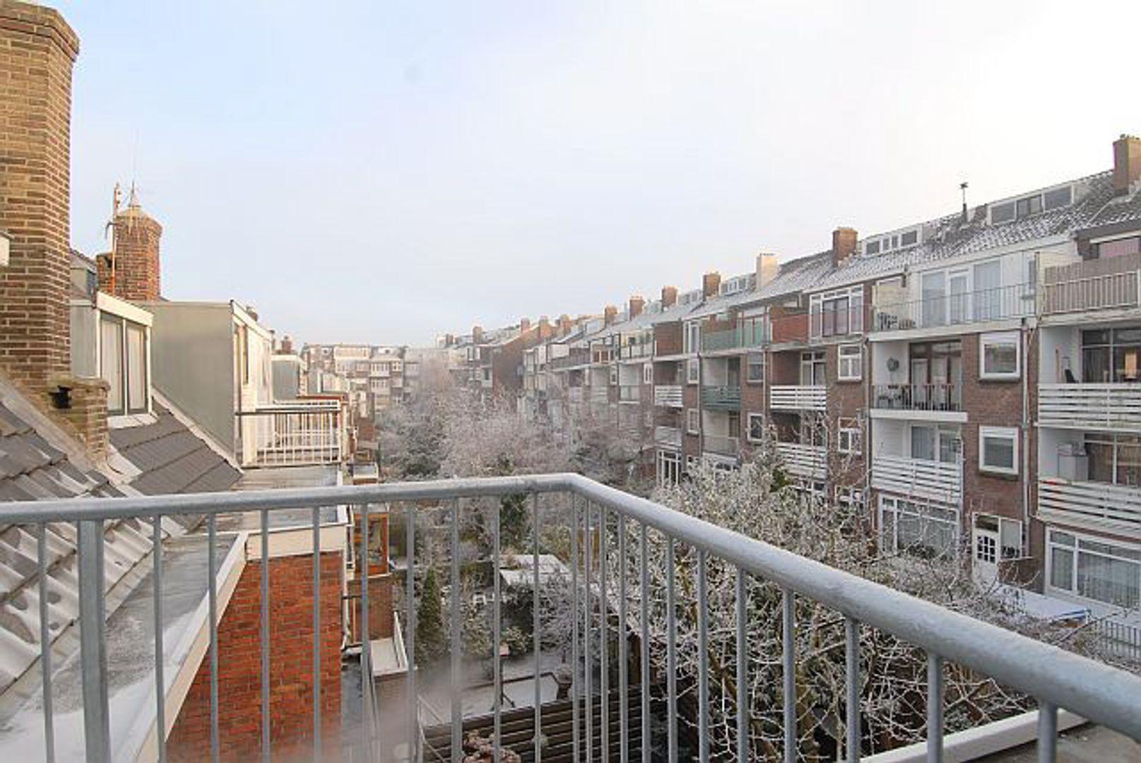 Jan Steenstraat, Schiedam foto-6